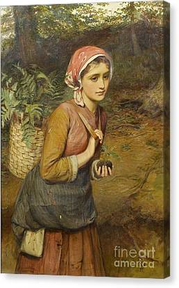 The Fern Gatherer  Canvas Print by MotionAge Designs