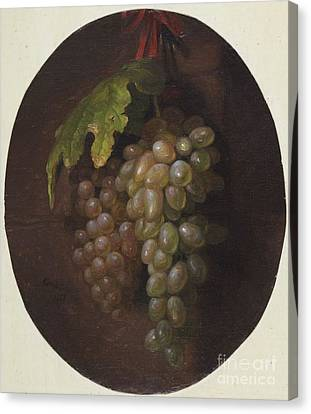 Title Grapes Rome Canvas Print by MotionAge Designs