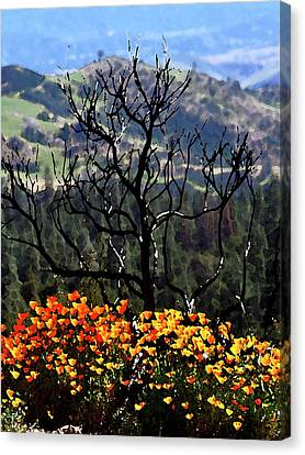 Tree And Poppies Canvas Print by Gary Brandes