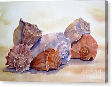 Whelks Canvas Print