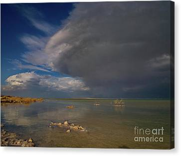 When The Storm Comes Canvas Print by Arik Baltinester