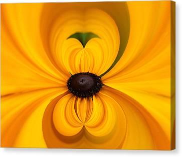 Yellow 3 Canvas Print by Jouko Lehto