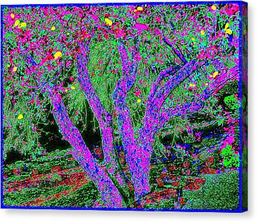 007h  Abstract Arcadia Tree Canvas Print by Ed Immar