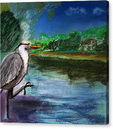 071115 Blue Heron Pastel Sketch Canvas Print