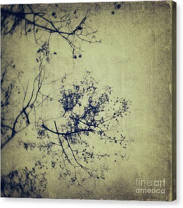 Splatters Of Blue 3 Canvas Print