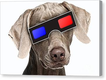 3d Dog Collection Canvas Print by Marvin Blaine