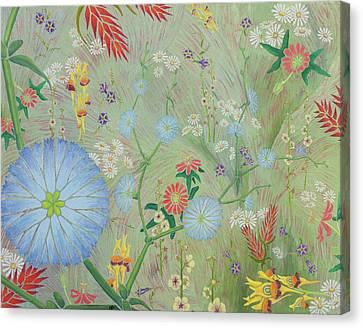 Passiflora Canvas Print - 49 Daisies by Nancy Jane Dodge