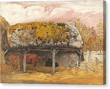 Old Barn Drawing Canvas Print - A Cow Lodge With A Mossy Roof by Mountain Dreams