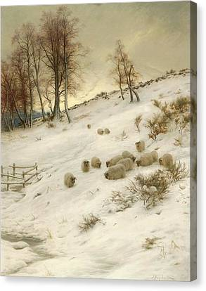 A Flock Of Sheep In A Snowstorm Canvas Print by Joseph