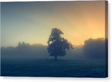 A Misty Sunrise Canvas Print by Chris Fletcher
