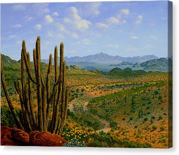 Canvas Print - A Place Of Wonder by Mark Junge