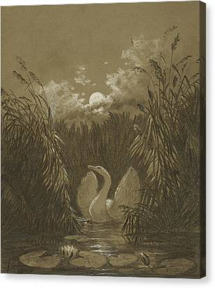 A Swan Among The Reeds, By Moonlight Canvas Print by Carl Gustav Carus