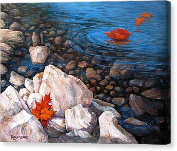 A Touch Of Fall Canvas Print by Tanja Ware