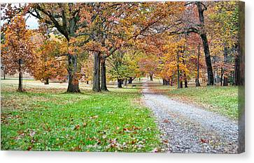 Canvas Print featuring the photograph A Walk In The Park by Robert Culver