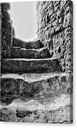 Abbey Steps  Canvas Print