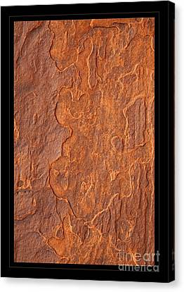 Abstract Texture Canvas Print by John Stephens