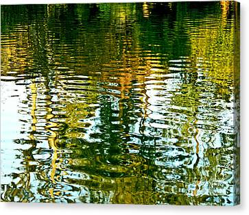 Reflections And Patterns In Nature Canvas Print by Carol F Austin