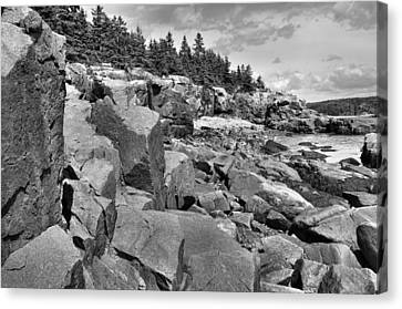 Acadia Seacoast Canvas Print