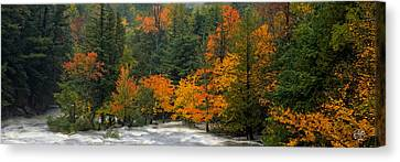 Adirondack Colors Canvas Print by Brad Hoyt
