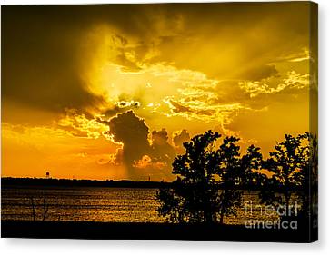 Canvas Print featuring the photograph After The Storm by Betty LaRue