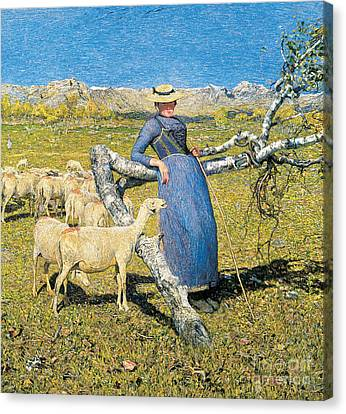 Afternoon In The Alps Canvas Print by Giovanni Segantini