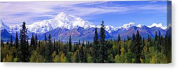 Alaska Range, Denali National Park Canvas Print