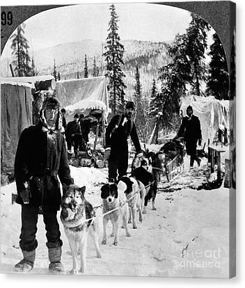 Alaskan Dog Sled, C1900 Canvas Print by Granger