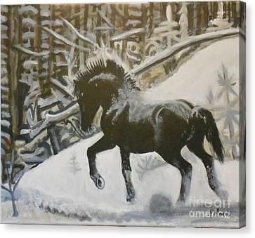 Alberta Wild Stallion Canvas Print