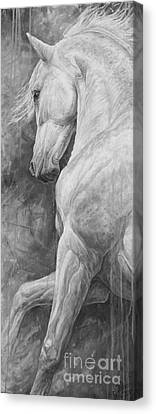 Allegro Canvas Print by Silvana Gabudean Dobre