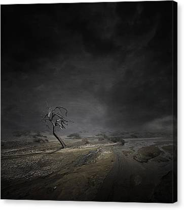 Alone Canvas Print - Alone by Zoltan Toth