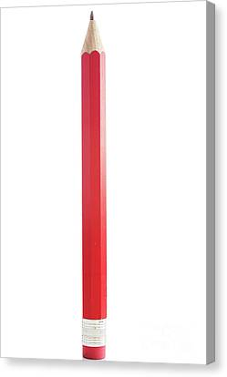 Amazing Isolated Pencil On Pure White Background Canvas Print by Piotr Marcinski