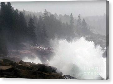 American National Parks Hotspots  Photo Collection Beyond Your Wild Imaginations Posters Canvas Gree Canvas Print