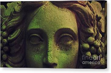 Amphictyonis Canvas Print by Stacey Brooks