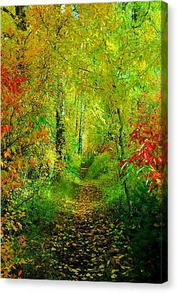 An Autumn Path Canvas Print by Jeff Swan