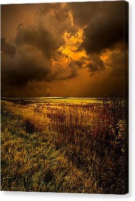 An Autumn Storm Canvas Print by Phil Koch