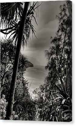 Ancient Kauai Canvas Print by Natasha Bishop