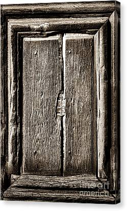 Antique Wood Door Panel Canvas Print by Olivier Le Queinec