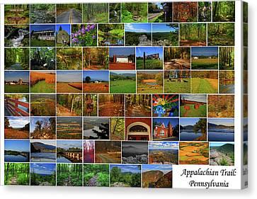 Canvas Print - Appalachian Trail Pennsylvania by Raymond Salani III