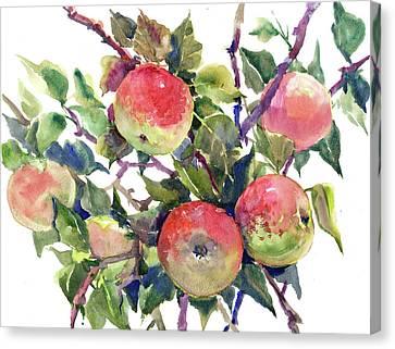 Apple Tree Canvas Print by Suren Nersisyan