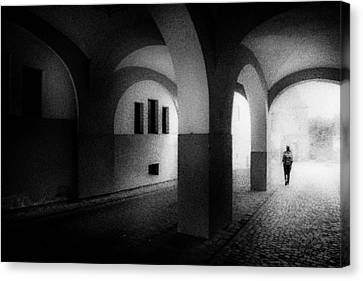 Arches Canvas Print by Celso Bressan