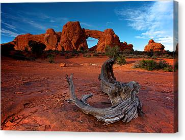Canvas Print featuring the photograph Arches by Evgeny Vasenev
