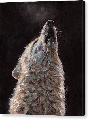 Mist Canvas Print - Arctic Wolf by David Stribbling