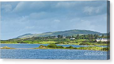 Ardmore Bay Canvas Print by Gabriela Insuratelu