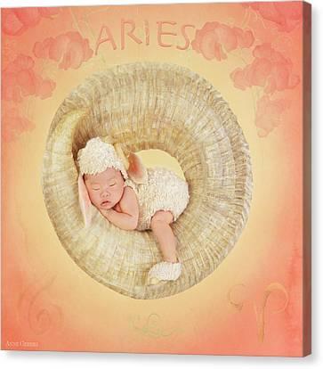 Aries Canvas Print by Anne Geddes