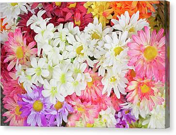Artificial Flowers Canvas Print by Tom Gowanlock