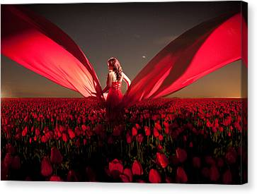 Canvas Print featuring the photograph Assembling The Tulips by Dario Infini