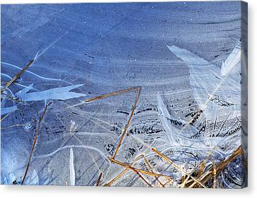At The Edge Canvas Print