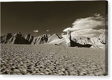 Atacama Desert Canvas Print