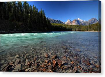 Athabasca River In Jasper National Park Canvas Print by Mark Duffy