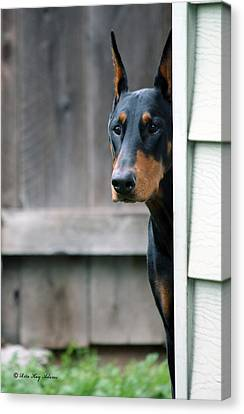 Attentive Canvas Print by Rita Kay Adams